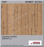 H1487-ST22