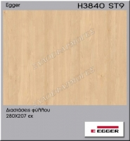 H3840-ST9